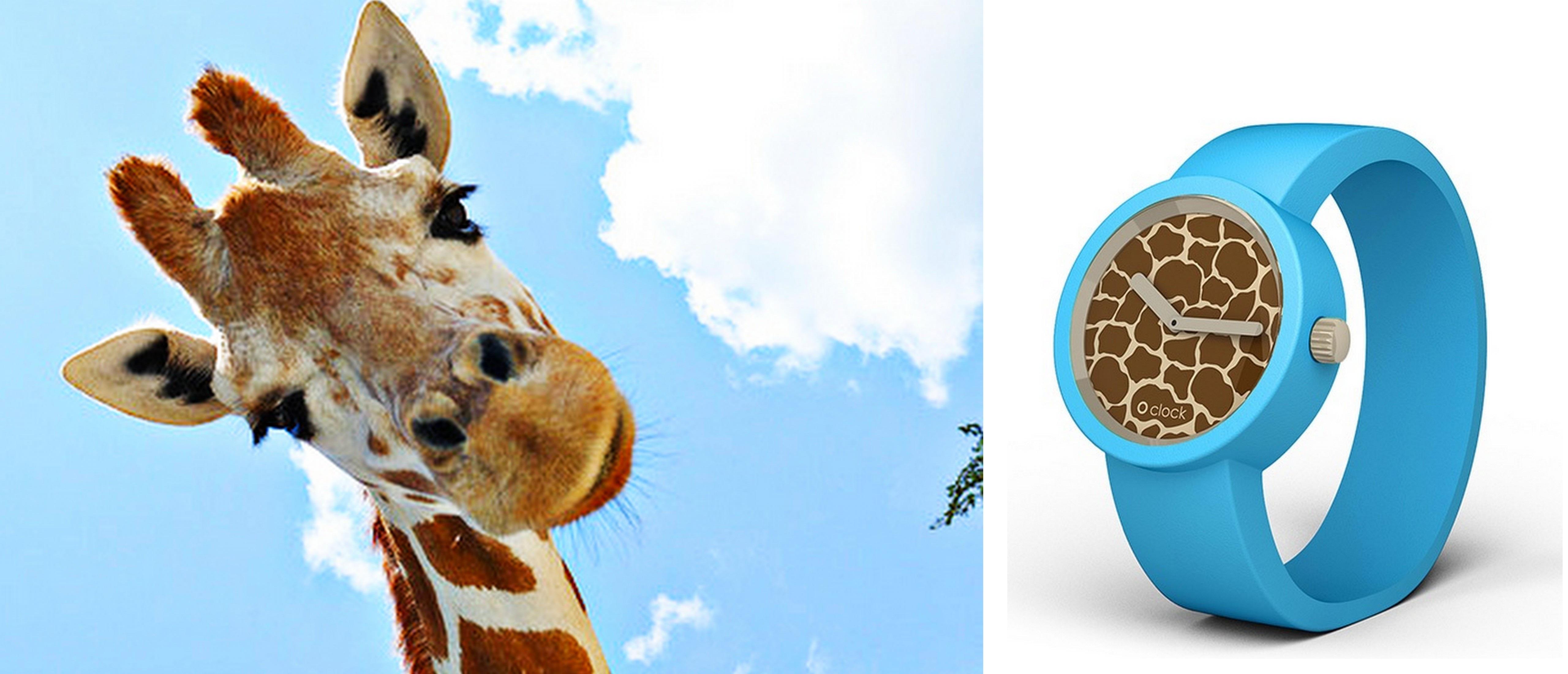 Zegarek O'clock Safari
